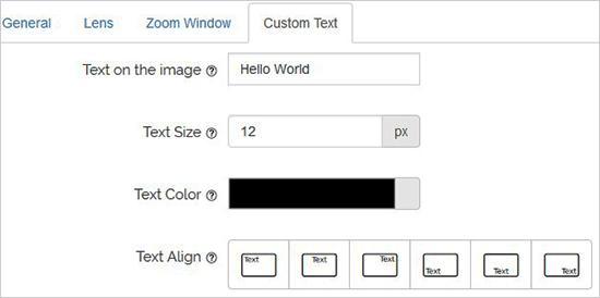 Custom Text Configuration