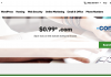 99 Cent Domain GoDaddy
